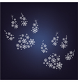 snowflakes paws vector image