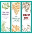 Healthy organic fruits sketch banners vector image