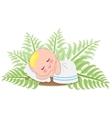 Sleep Baby In Fern vector image