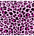 Leopard seamless pattern design background vector image