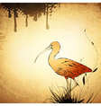 Red Ibis Vintage Background vector image vector image