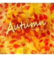 Bright autumn abstract background vector image