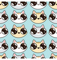 eamless pattern with kawaii kittens vector image