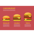 Three hamburgers set infographic vector image