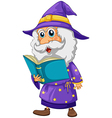 A wizard holding a book vector image