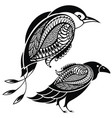 birds decorative set vector image