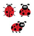 ladybug cartoon vector image