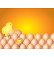 chicken eggs background vector image vector image