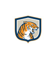 Angry Tiger Head Sitting Growling Shield Retro vector image