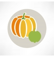 Pumpkin isolated over white vector image vector image