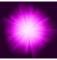 purple star burst vector image