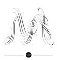 Calligraphic letter Abstract font vector image vector image