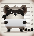 arrested raccoon vector image
