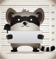 arrested raccoon vector image