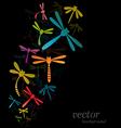 Dragonfly design vector image