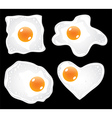 eggs fried vector image