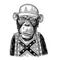 monkey redneck in trucker cap t-shirt with flag vector image