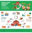 Domestic Animals Infographics vector image
