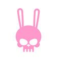 Rabbit skull isolated pink hare skeleton head vector image
