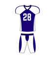 special sport uniform vector image