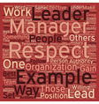 Leadership Be An Example text background wordcloud vector image