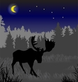 Elk in the night forest vector image