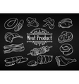 Set hand drawn monochrome icon meat vector image