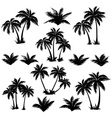 Tropical palm trees set silhouettes vector image