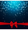 Star Shiny Sky with Ribbon and Bow vector image