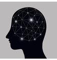 Brain System vector image