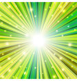 st patrick rays background vector image vector image