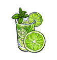 half lime and glass of juice mojito cocktail vector image