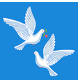 Soaring doves with flower vector image vector image