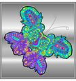 Butterfly doodle zentangle inspired art vector image