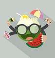 Summer Icon Flat Design vector image