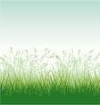 Grassy meadow vector image vector image