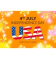 Shiny fireworks for 4th of July American vector image