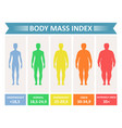 index mass body vector image