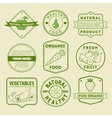 Set of Healthy Food Badges and Logos vector image