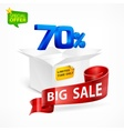 Big sale concept percent inscription in box vector image vector image