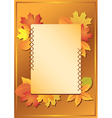frame with autumn leaves vector image