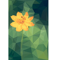Polygonal of cosmos flower vector image
