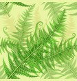 seamless pattern with green fern leaves vector image