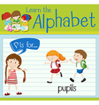 Flashcard letter P is for pupils vector image