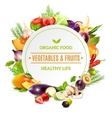 Natural Organic Food Background vector image