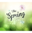 Its Spring Time vector image vector image