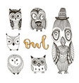 set of cute doodle owls birds isolated collection vector image