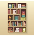 Shelves with colorful books vector image