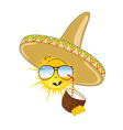 sun with sombrero and coconut vector image