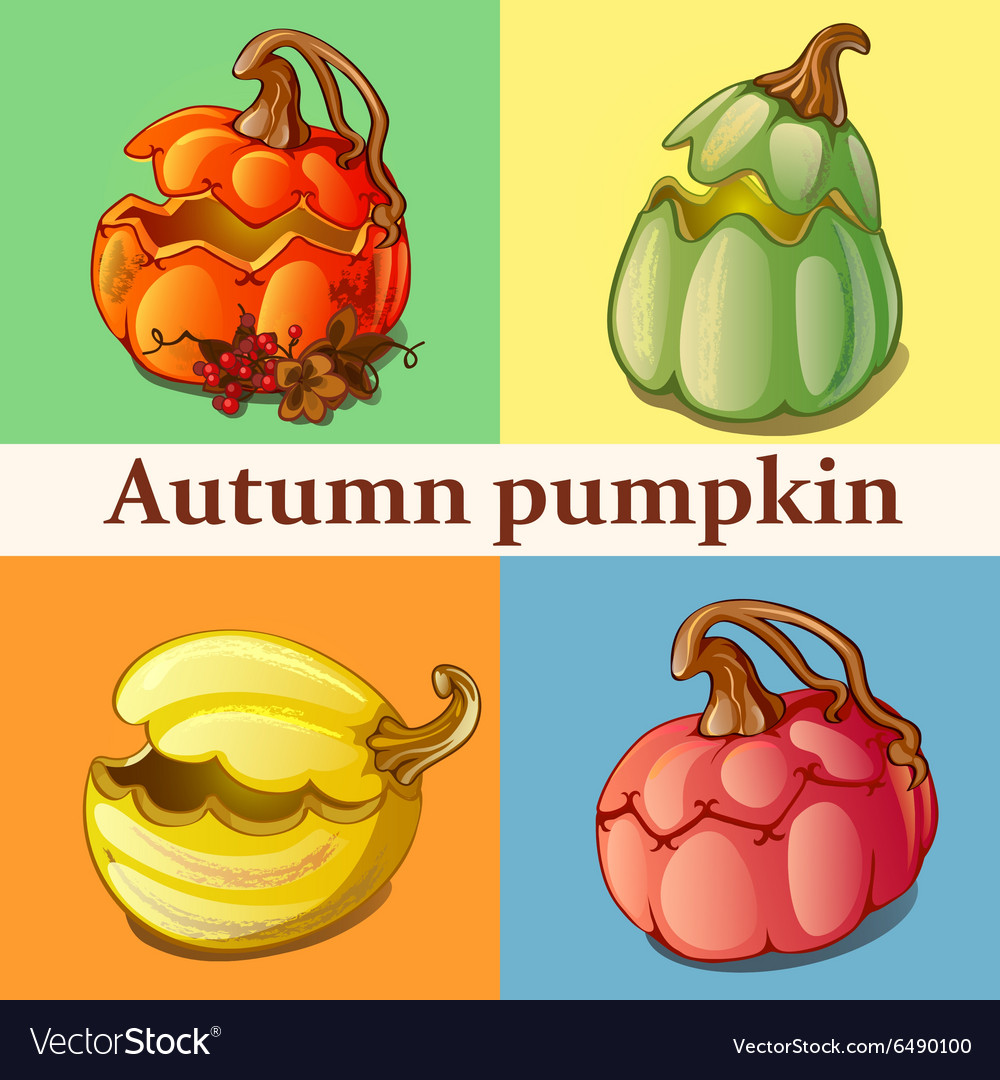 Four icons with pumpkin vector